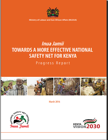 NSNP Progress Report Cover March 2016